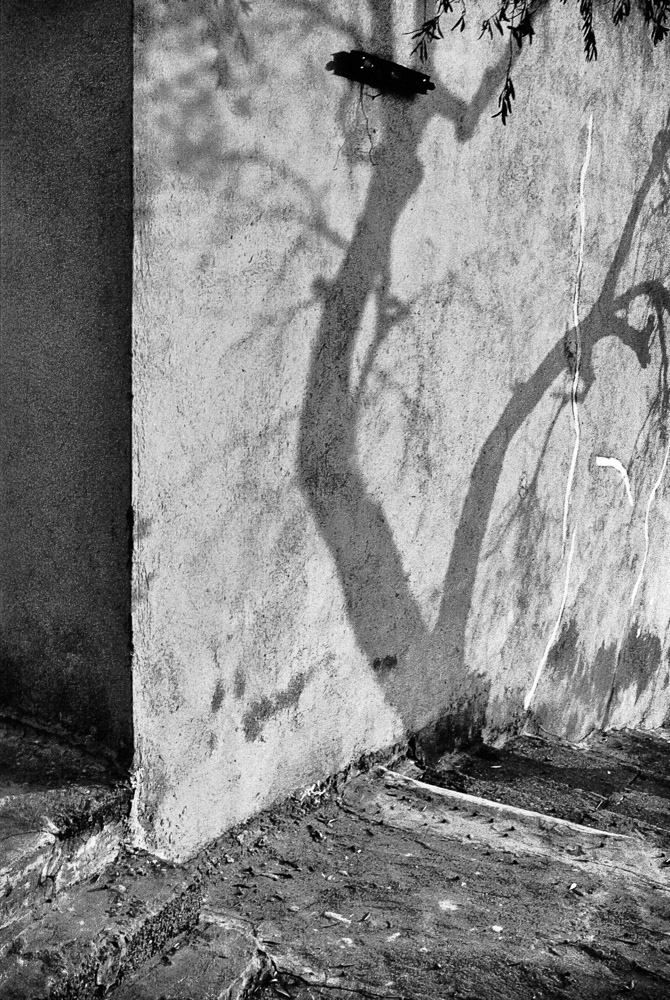 "Acquappesa Paese - Italy Wall and stairs of an old country house Pentax ME Super + 40/2.8 Pentax M ""Pancake"""