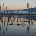 #347. Misty sunrise at Theewaterskloof Dam