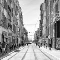 #356. On location: The Sunny Streets of Marseilles