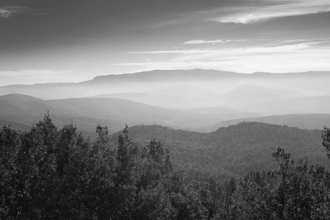 #451. A high-contrast hillwalk with the Zeiss Loxia 35/2