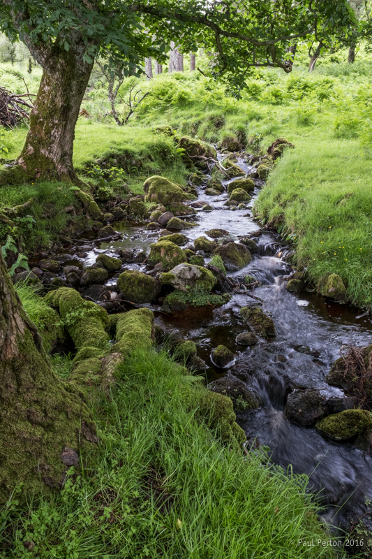 Stream at Torrish. Fuji X-Pro2. Paul Perton