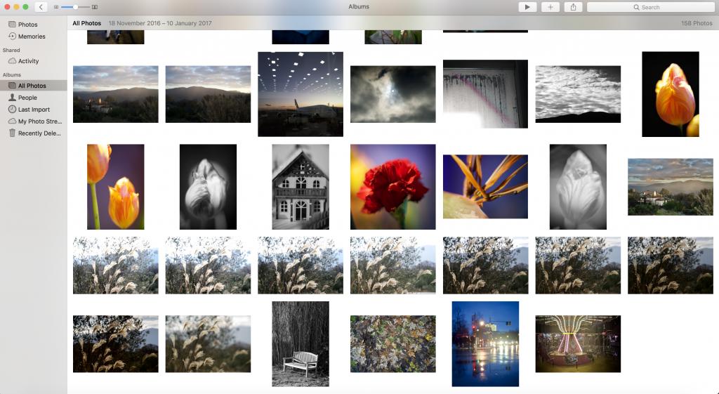 Apple Photos in Catalog mode