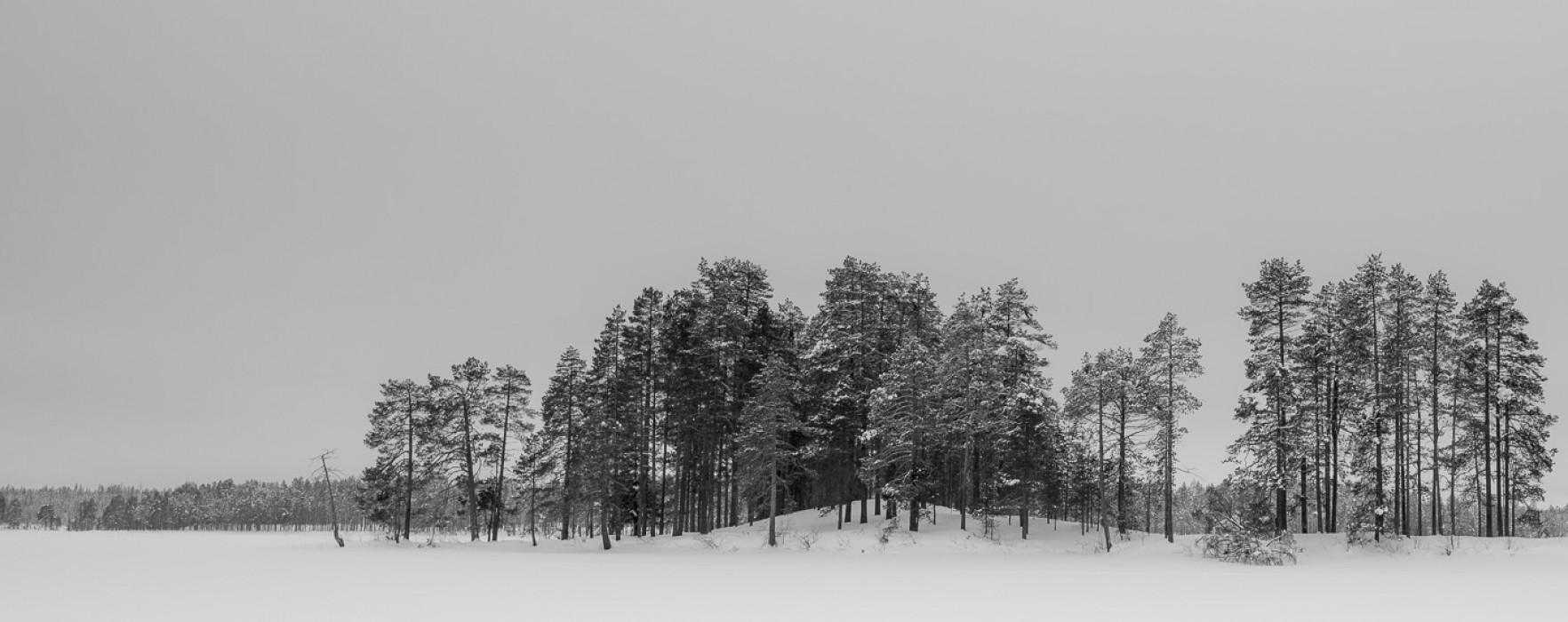 #141. Lapland in monochrome