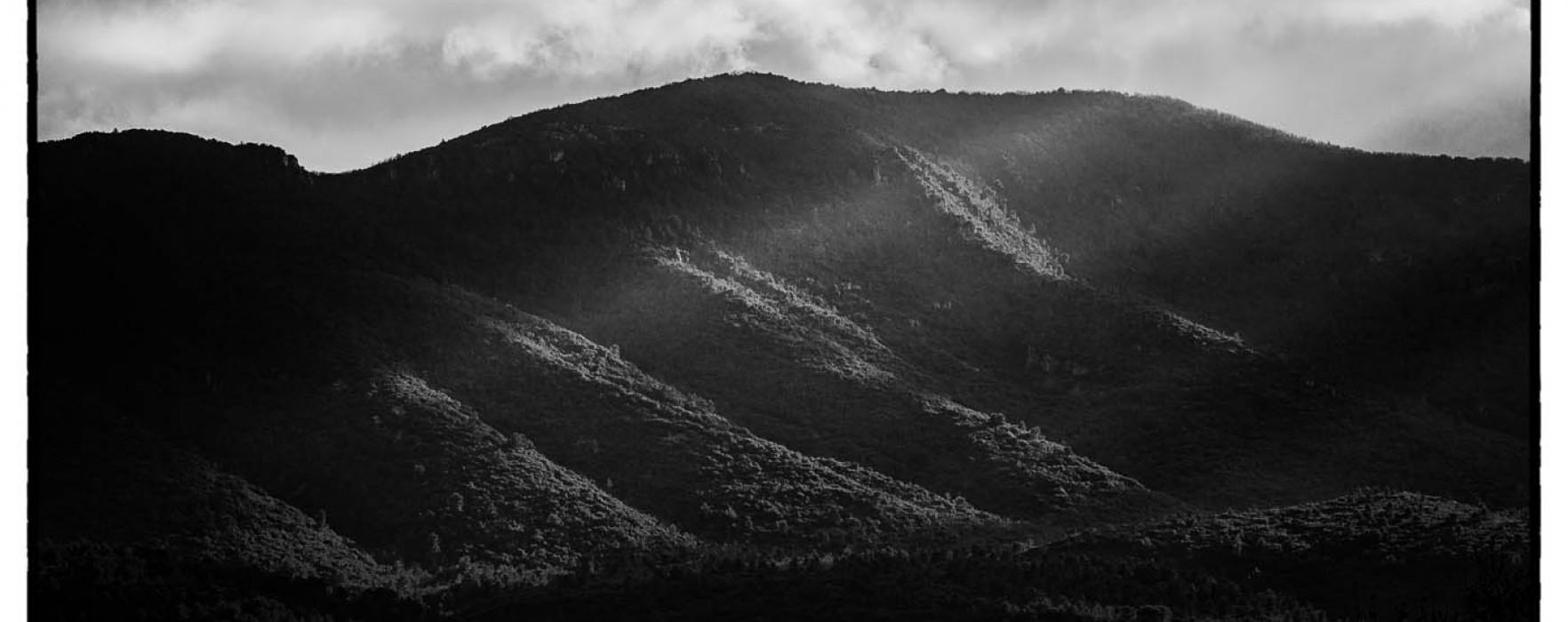 #190. Leica Apo-Telyt 135/3.4 (on Sony A7r) : the Long Ranger