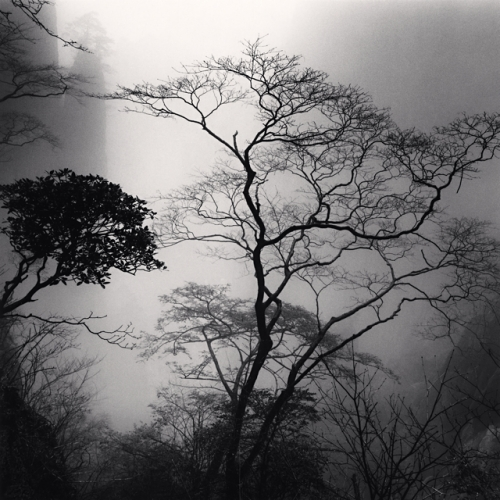 Huangshan mountains, Study 44, Anhui, China. (c) Michael Kenna, 2010.