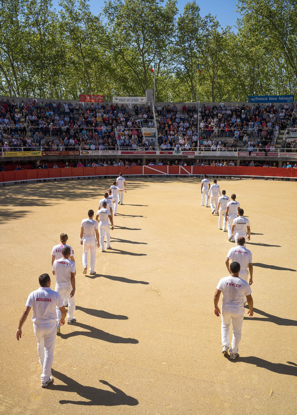 The competitors of the course camarguaise enter the arena in Lunel