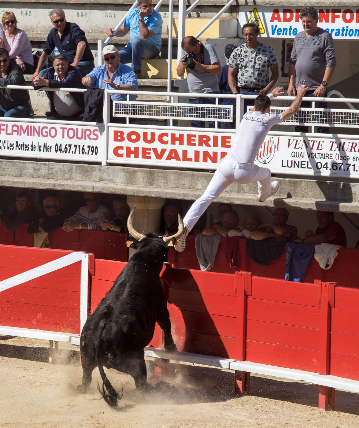 A raseteur narrowly escapes a bull