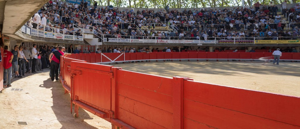 The course camarguase arena in Lunel, Provence, France