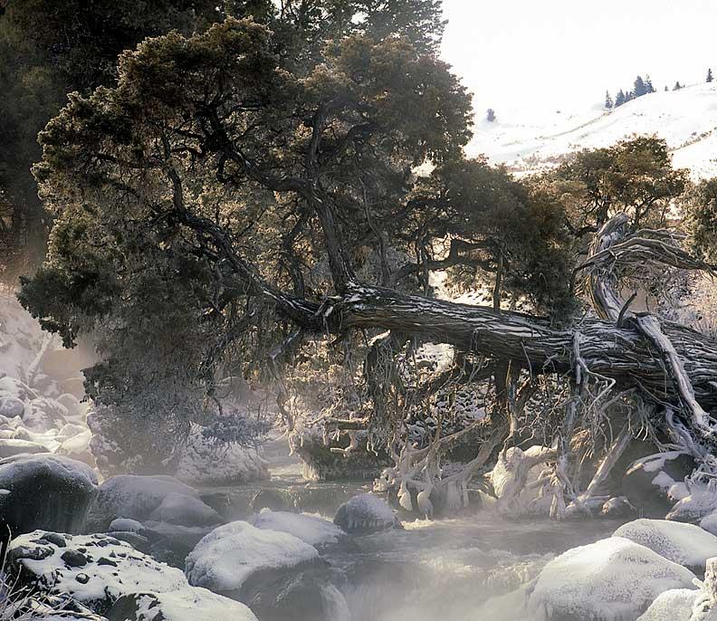 River Frost - (c) Michael Reichmann