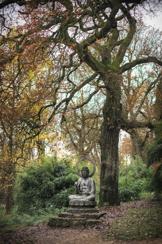 A statue of Japanese Buddha in the arboretum at Batsford, Cotswolds, near Stratford upon Avon