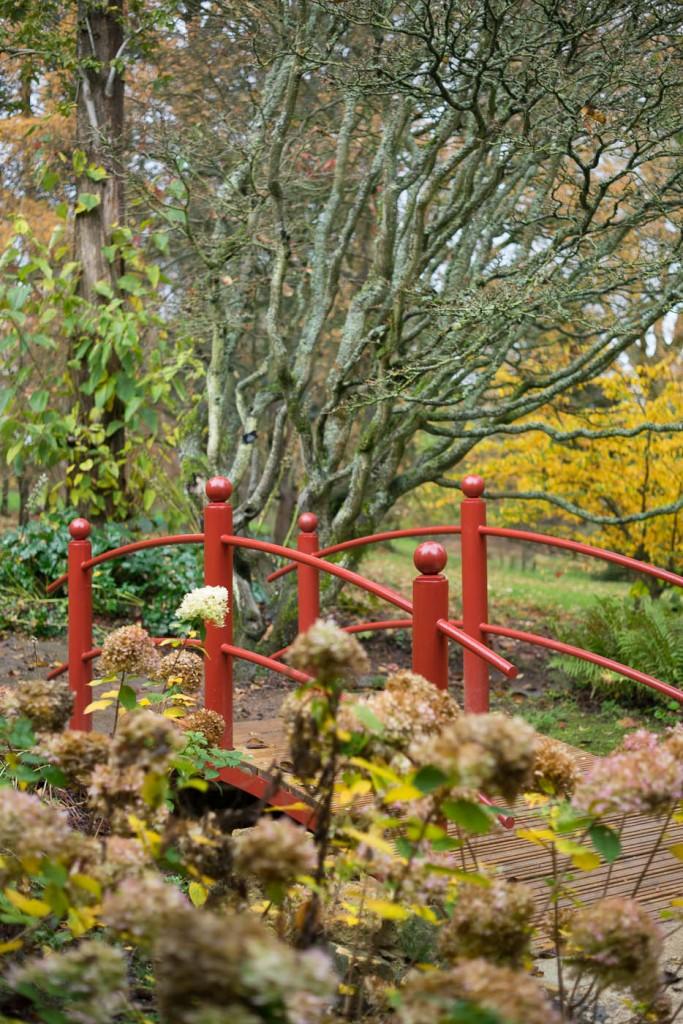 Red Japanese bridge in Batsford arboretum