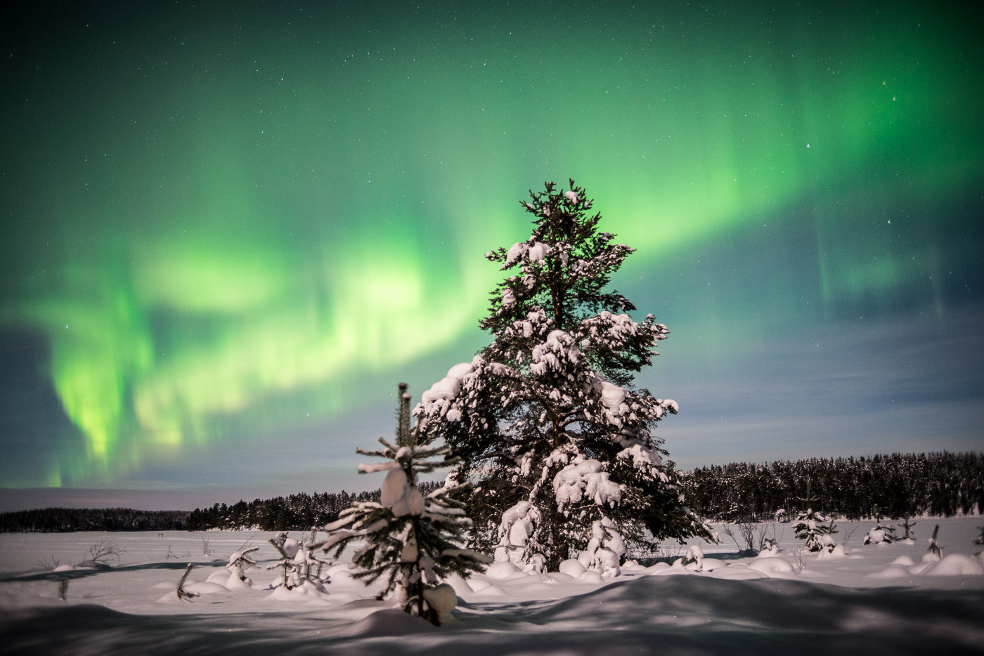 Aurora over Lapland