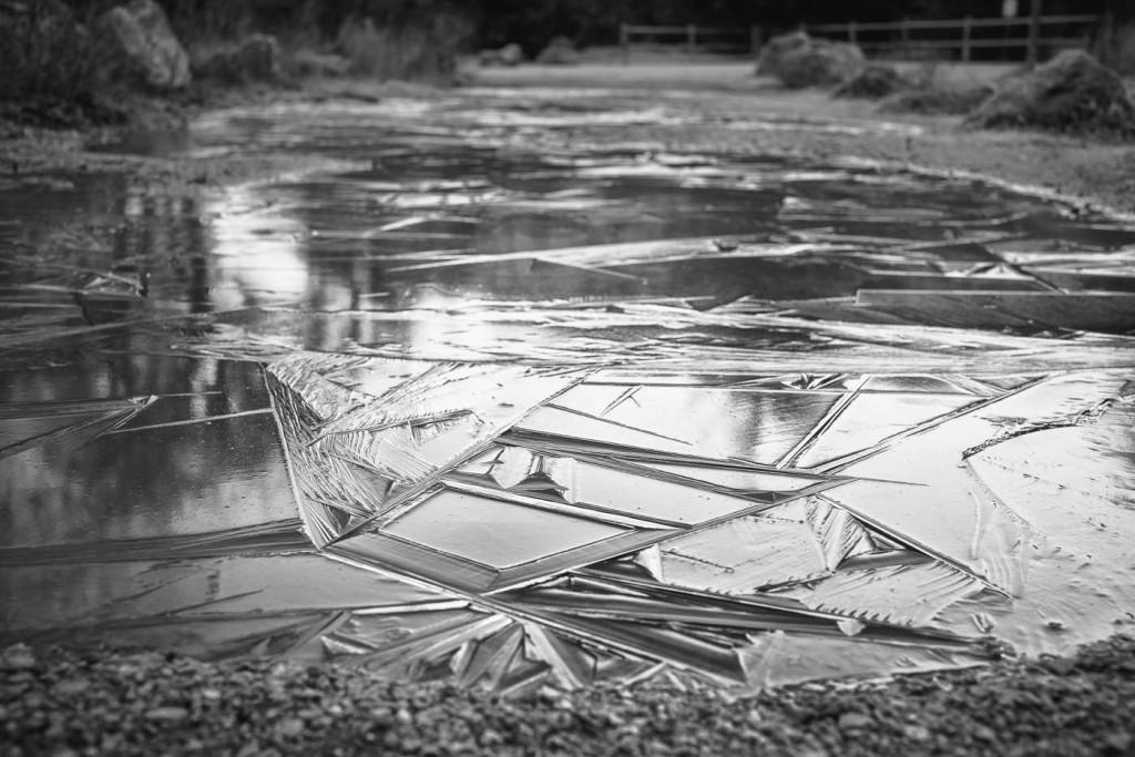 Frozen water on a walk path. Sony Aèr & Zeiss 35mm f:1.4 ZM