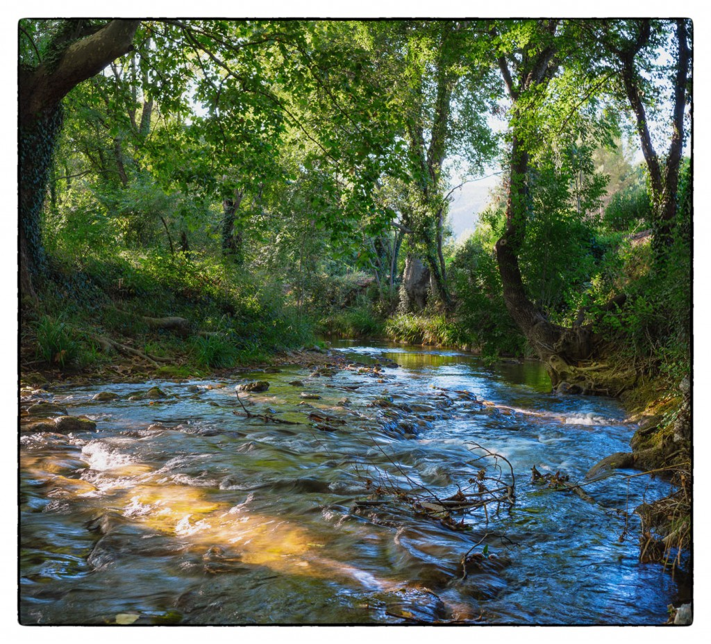 Provence stream under trees photographed with a Sony A7rII and Zeiss Distagon 1.4/35 ZM