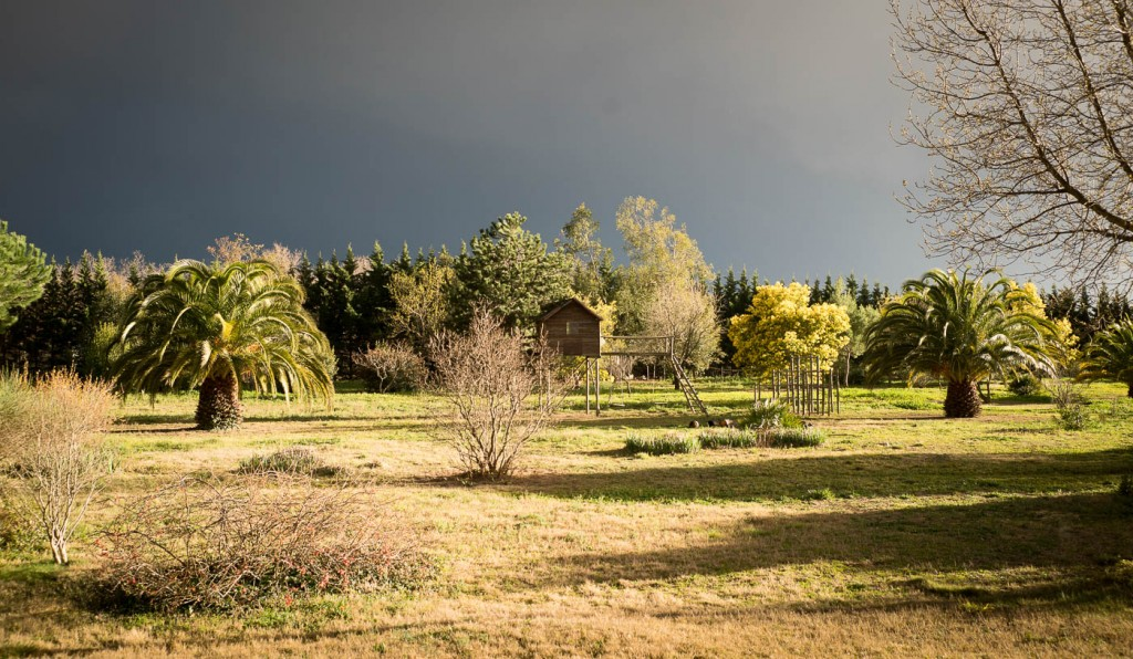 Storm clouds and sunlight in a catalan garden. Sony A7r2 & Zeiss Loxia 35/2