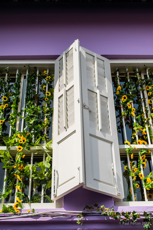 Haji Lane - lilac and sunflowers. -2 with 35mm f1.4 @ f2.8. ISO 200. Note that the shadow at the top is cast by the roof eave and not a vignette. Processed using Thomas Fitzgerald's Velvia plug in.
