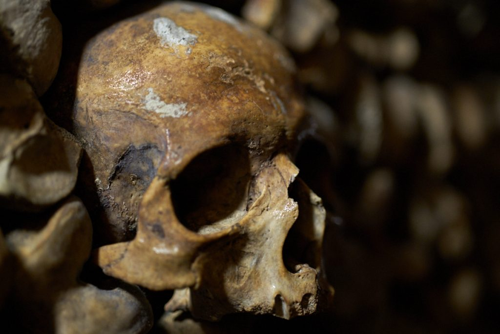 Skull in Paris catacombs