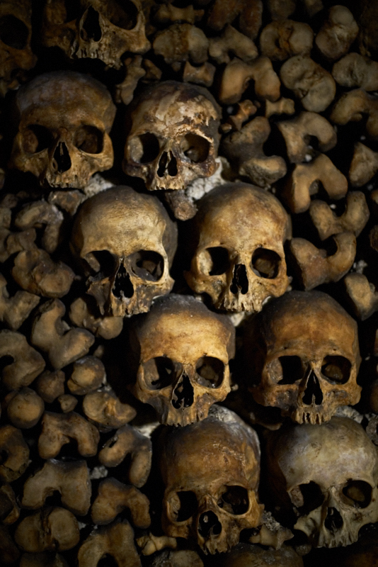 Skulls in a diagonal in Paris catacombs