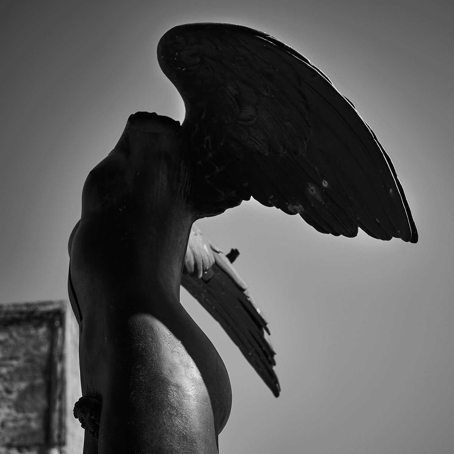 phr photo collection headless angel