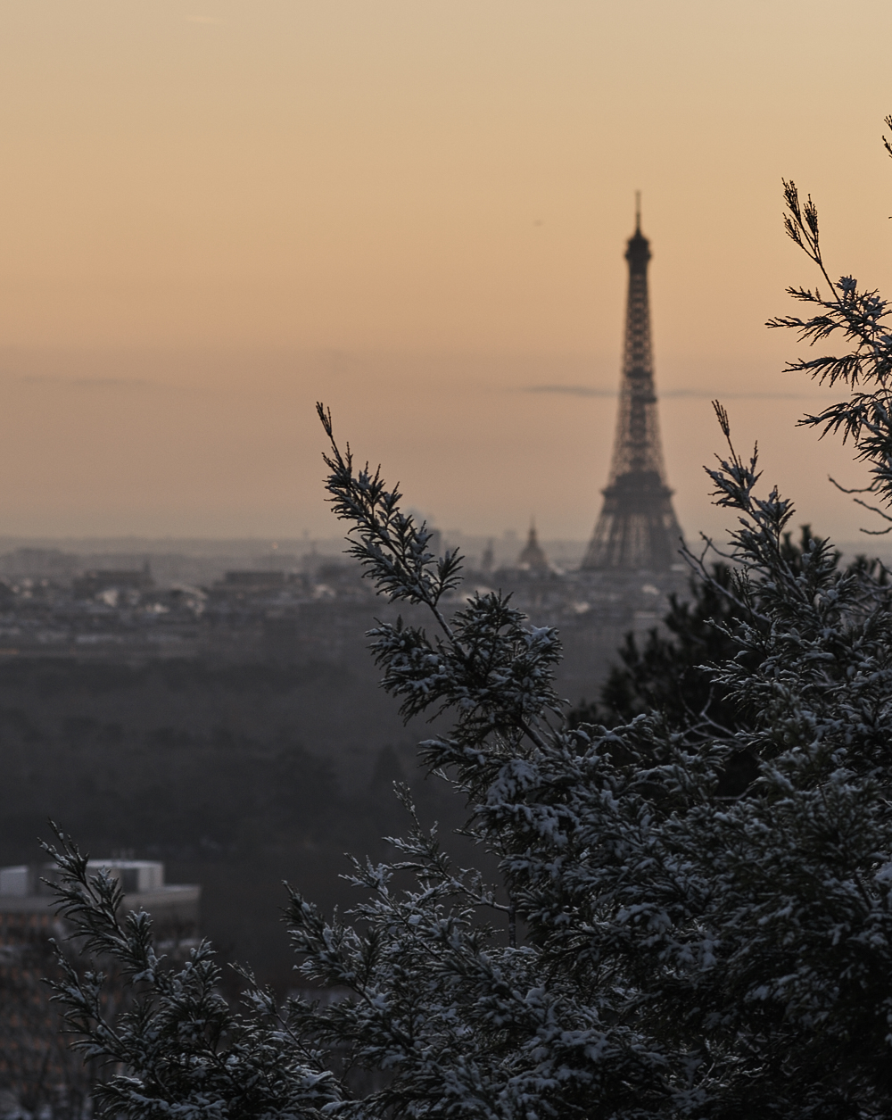 Winter Paris - Philippe Berend
