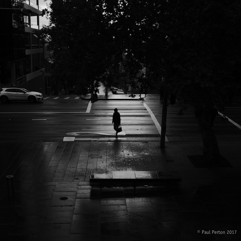 Dull day, road crossing, Darlinghurst - Paul Perton