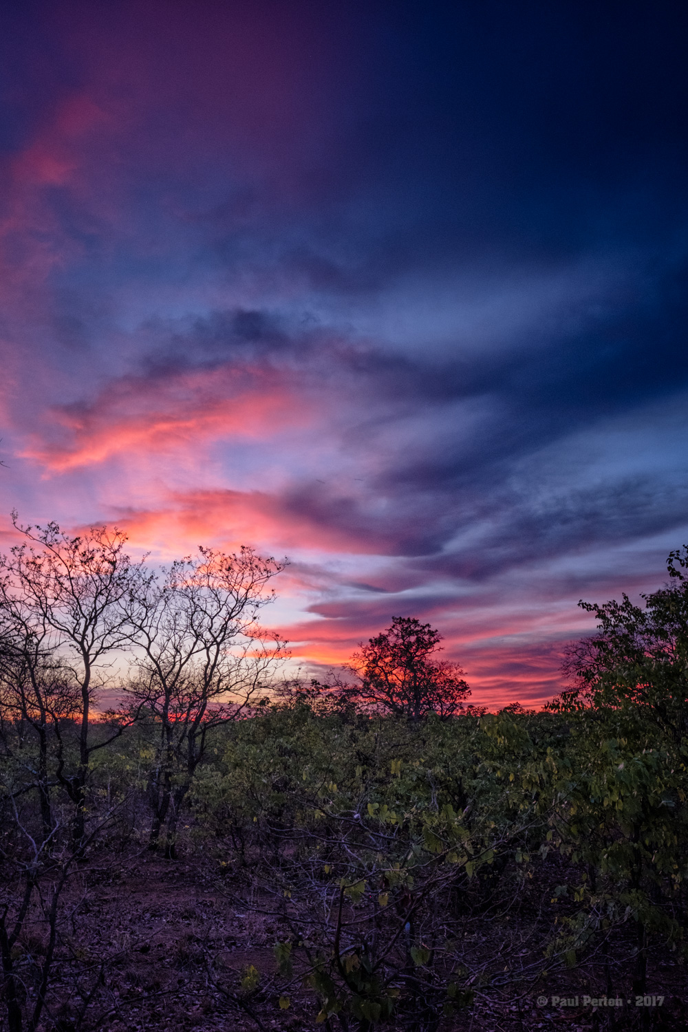 Sunrise, Kruger National Park - this is just extraordinary light, not HDR