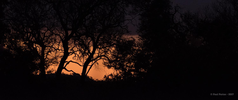 Dusk, Kruger National Park