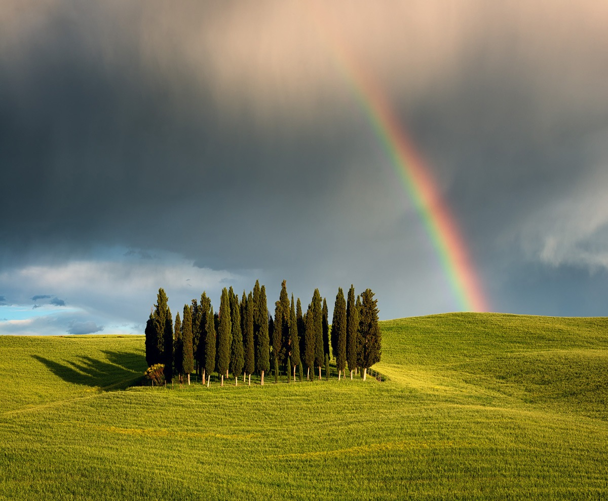 Cypress Hill Rainbow