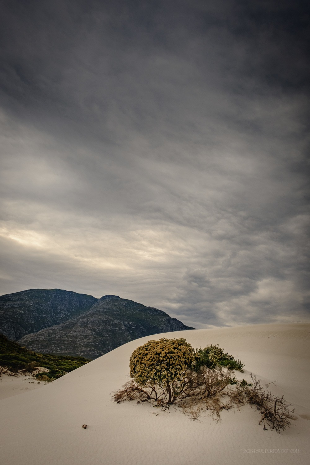 Dunes at Betty's Bay - X-H1, 16mm f1.4 @ f11