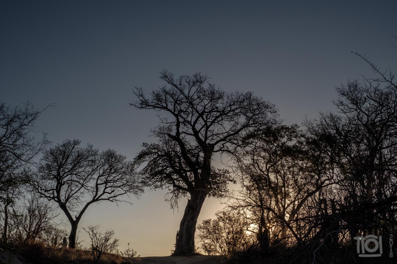 Setting sun near Talamati