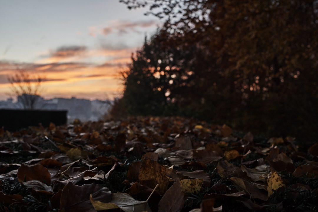 #797. Monday Post (10 Dec 2018) – With a lens, or through a lens?