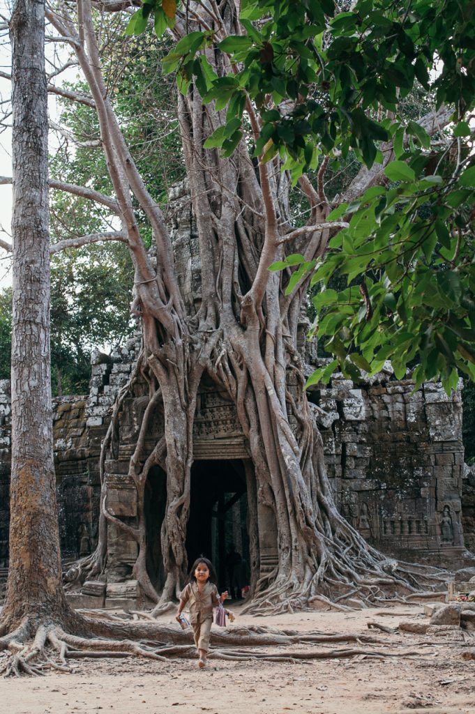 Gate with strangler fig to Ta Som temple, Angkor