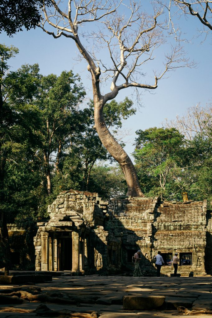 Entrance to famous Ta Prohm, Angkor