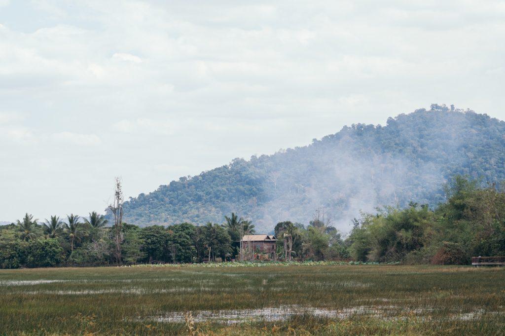 Cambodian rural scenery, Angkor area