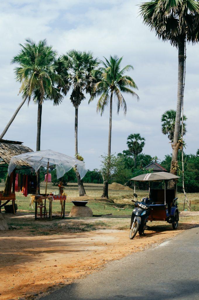 Cambodian rural street scenery, Angkor area